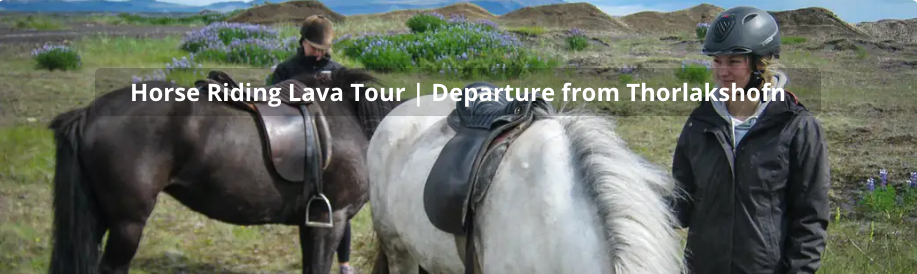 Horse riding lava tour
